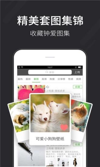 壁纸多多app最新版